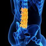 low back pain PhysiYoga